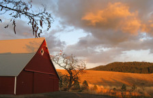 Red Barn in the Autumn Light