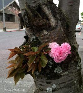 Cherry Blossom Heart - janetcrosby.com
