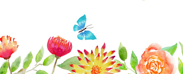 Watercolor Flowers and Butterflies - Janet Crosby